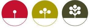 DesignBuildLive Logo