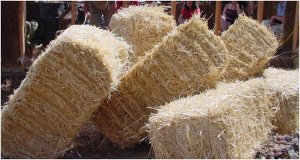 strawbales300x